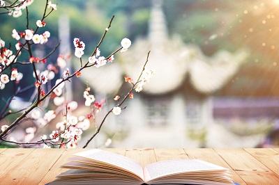 上海财经大学新闻学(媒介经营与广告策划文化传播方向)在职研究生